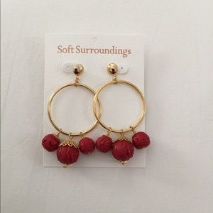 Soft surroundings beautiful earring